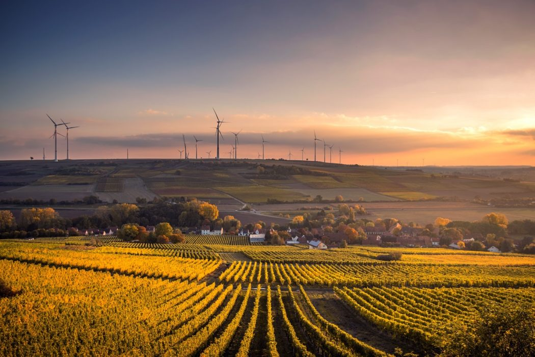 Germany's CO2 emissions predicted to decline remarkably in 2019