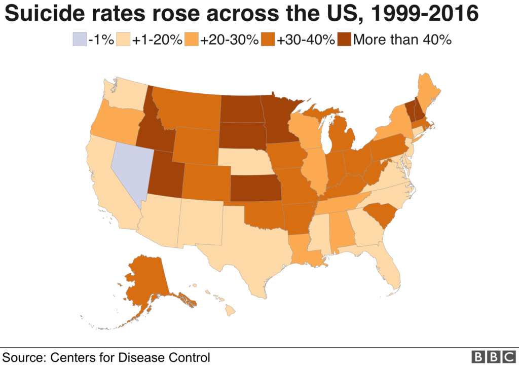 Suicide rates in the United States - BBC