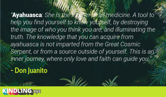 Ayahuasca Quote