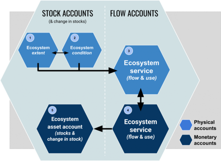 System of Environmental-Economic Accounting—Ecosystem Accounting diagram